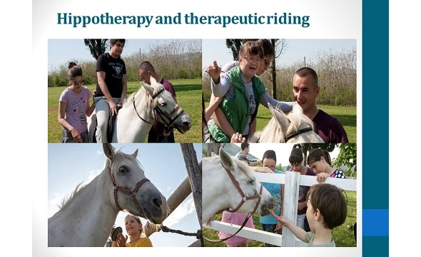 Hippotherapy 2